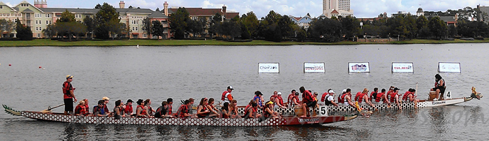Dragon boats on the Disney waterfront