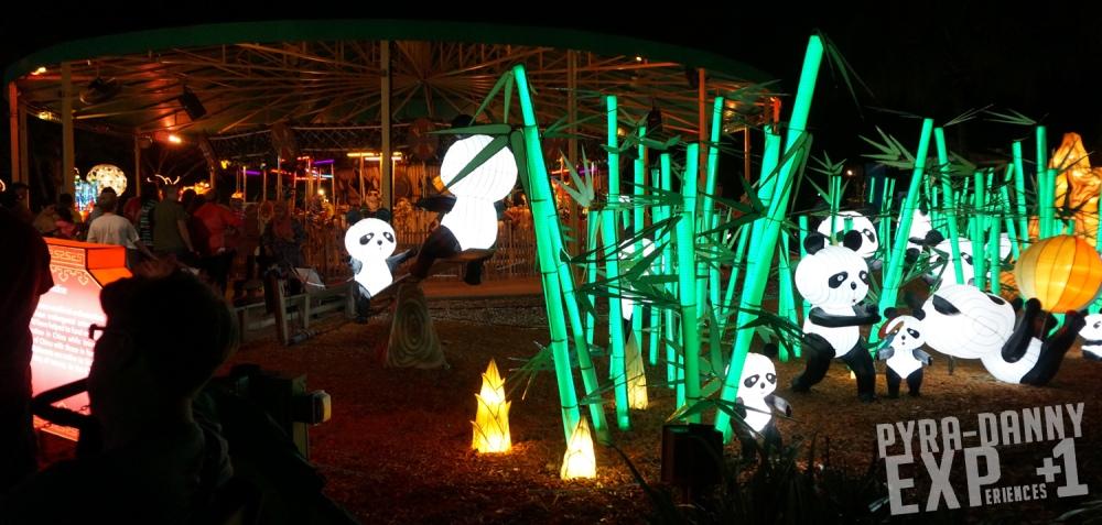 Pandas at a bamboo garden