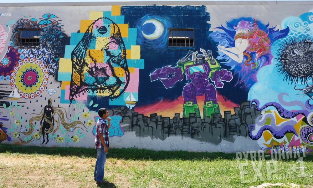 Murals outside of 12Bones [Eating Up the Asheville Scene | PyraDannyExperiences.com]